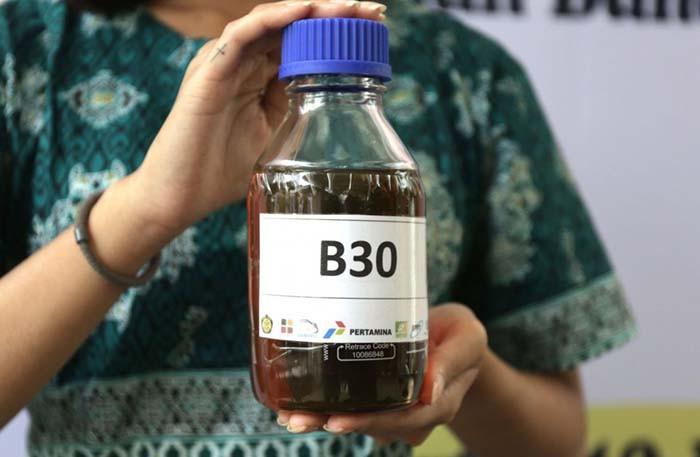 dampak biodiesel 30