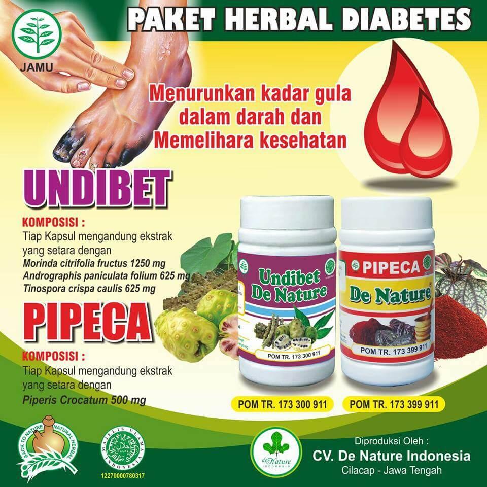 Obat Herbal Diabetes Melitus De Nature Toko Herbal Sba Toko Herbal Sba