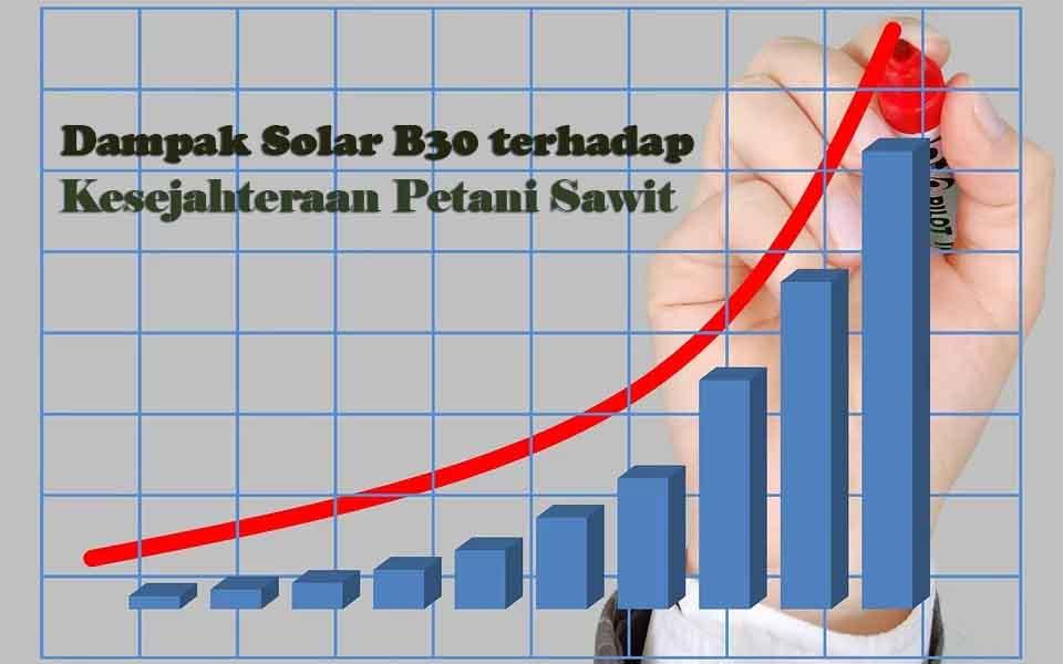Dampak Penerapan Solar B30 Terhadap Kesejahteraan Petani