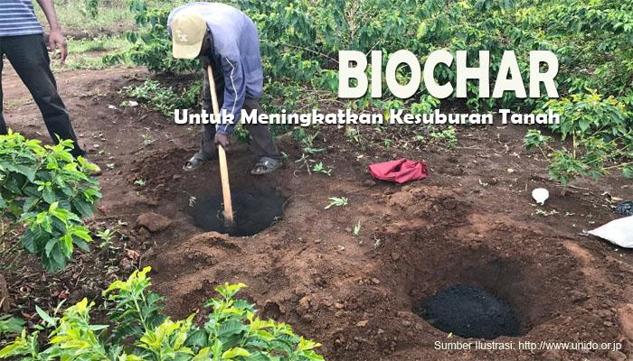 Meningkatkan Kesuburan Tanah dengan Biochar